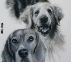 Portrait Hunde
