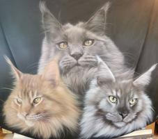 Haube mit Katzen-Motiv 2