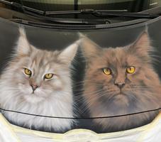 Haube mit Katzen-Motiv